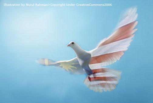 malaysian-pigeon.jpg